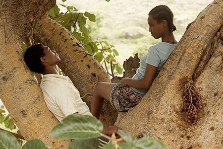 Still from the film: Fig Tree